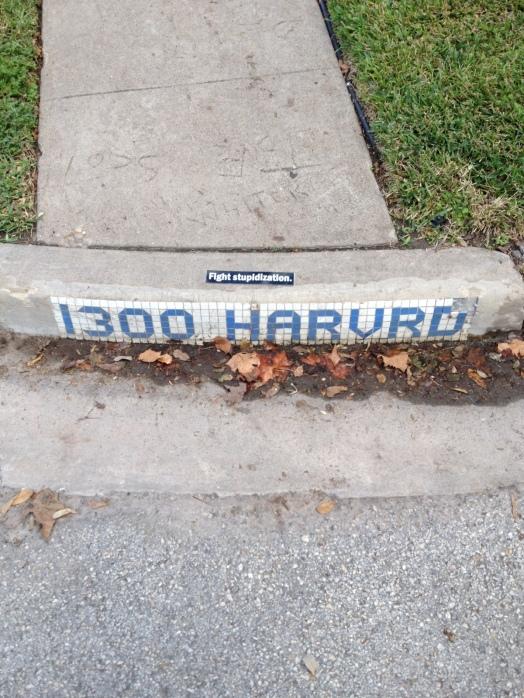 Harvard Street, Houston